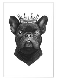 Valeriya Korenkova - King French bulldog