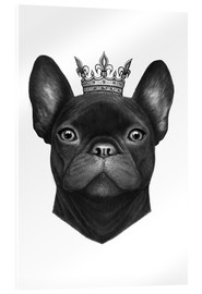 Acrylglasbild  Queen French Bulldog - Valeriya Korenkova