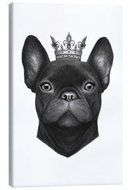 Leinwandbild  Queen French Bulldog - Valeriya Korenkova