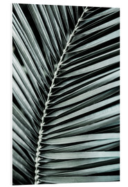 Forex  French Palms 3 - Mareike Böhmer Photography