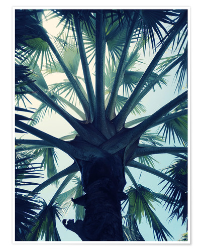 Premium-Poster Tropical Tranquillity