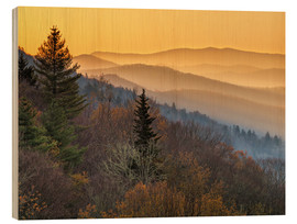Holzbild  Great Smoky Mountains National Park - Ann Collins