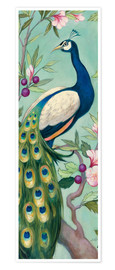 Premium-Poster  Pretty Peacock II - Julia Purinton