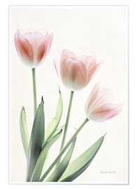 Premium-Poster Light and Bright Floral II