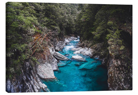 Leinwandbild  Blaue Pools, Mount Aspiring National Park - Nicky Price