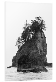 Hartschaumbild  Felsen am Second Beach im Olympic National Park, USA - Peter Wey