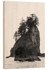 Holzbild  Felsen am Second Beach im Olympic National Park, USA - Peter Wey