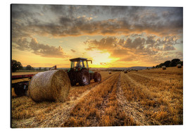Alu-Dibond  Harvested Cornfield Sunset - Simon West