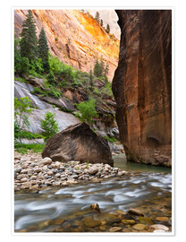 Premium-Poster The Narrows, Zion-Nationalpark, Utah, USA