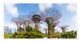Matteo Colombo - Der Supertree-Wald in Singapur