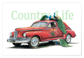 Premium-Poster  Country Life - Georg Huber