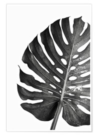 Poster  Schwarze Monstera 03 - Art Couture
